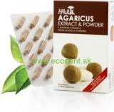 Agaricus blazei, EXTRACT + POWDER