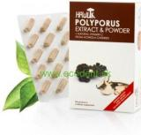 Polyporus umbellatus, EXTRACT + POWDER